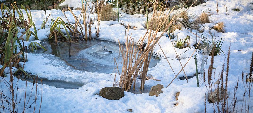 Gartenteich Winterfest